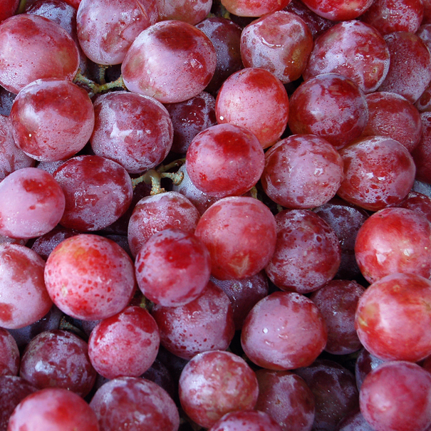 red-grape-extract